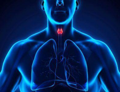 Dieta en el hipotiroidismo