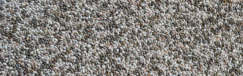 Semillas de chía - Fuente de Proteína
