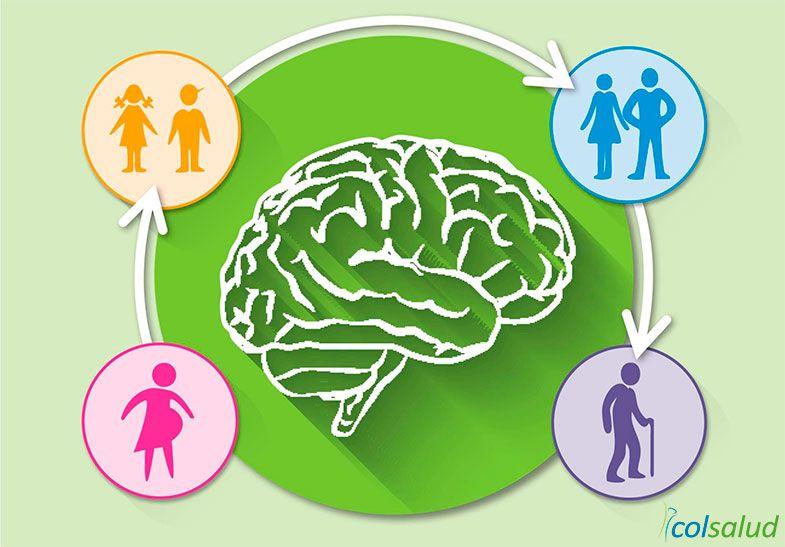 Suplementos DHA para la salud del cerebro en todas las etapas de la vida
